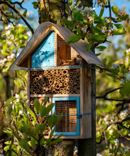 Wooden Insect Hotel In Spring Sunny Fruit Trees Orchard