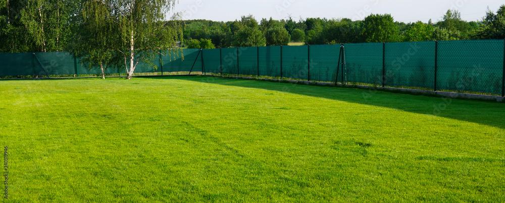 Fototapeta Zielona trawa w ogrodzie ogrodzona .