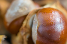 Closeup Of Chestnuts/conkers