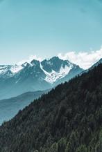 Beautiful Vertical Scenery Of ...
