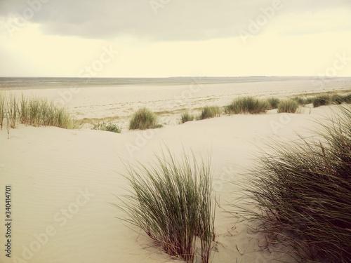 Scenic View Of Beach Against Sky © daniel seiler/EyeEm
