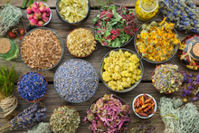 Bowls Of Dry Medicinal Herbs - Lavender, Coneflower, Cornflower, Marigold, Rose, Helichrysum Flowers, Healthy Moss And Lichen, Infusion Bottles. Top View. Herbal Medicine.