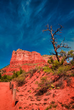 Bright Red Rocks And Lone Tree Before Blue Sky At Bell Rock In Sedona Arizona