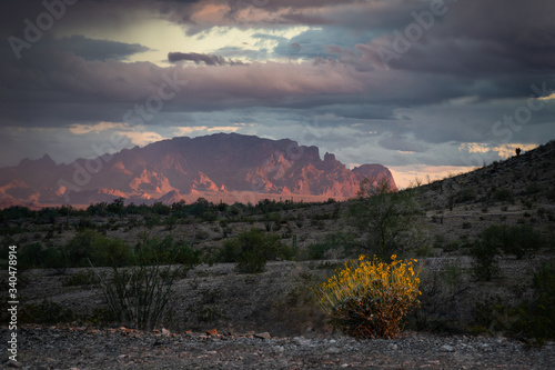 Sunset in the Sonoran Desert Canvas Print
