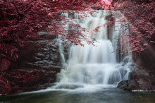 Majestic Waterfall In Forest L...