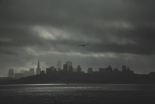 Low Angle View Of Silhouette Bird Flying Over Sea Against City During Storm