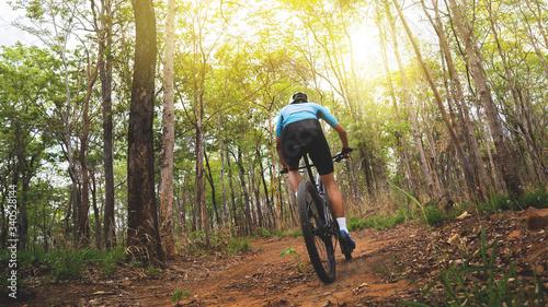 Fényképezés Mountain biker cyclists training in the forest