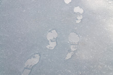 Wet Footprints On A Road Cover...