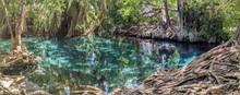 River. Chemka Hot Springs. Kikuletwa Hotsprings. Moshi. Arusha. Kilimanjaro. Tanzania