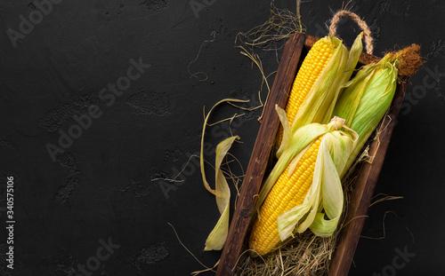 Fotografía Fresh corn cobs on black background, copy space for chalk text