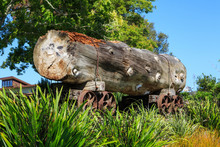 A Massive Log On An Old Logging Trolley In A Katikati, New Zealand Park. Native Kauri Trees Like This Were Felled In The Early Twentieth Century