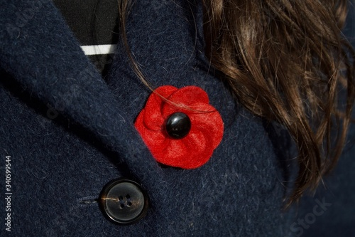 Canvas Print Close-up Of Red Brooch On Coat