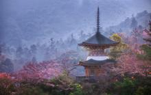 Historical Five-story Pagoda Of Toyokuni Shrine And A Typical Japanese Roof In Miyajima, Hiroshima, Japan