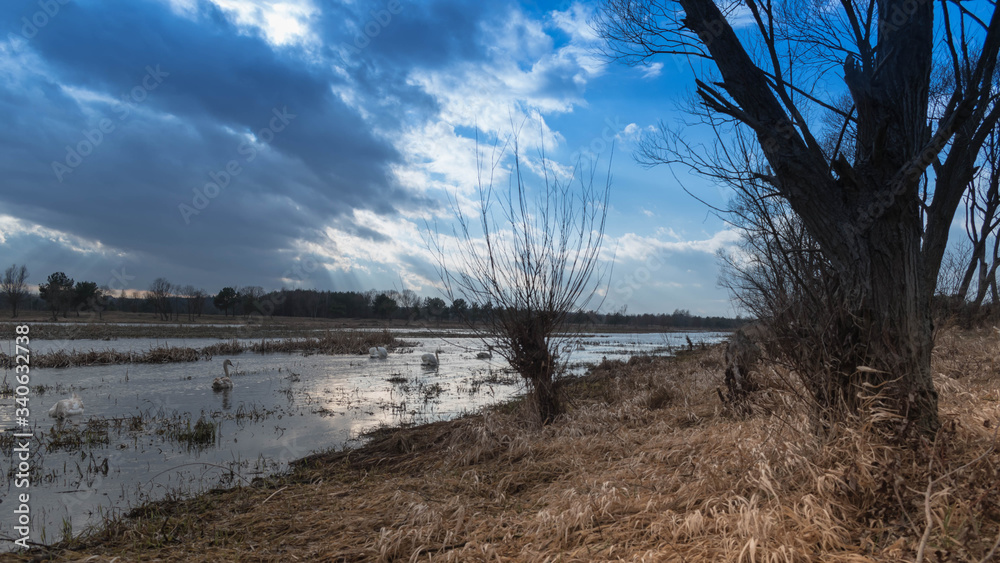 Fototapeta Błękitne niebo nad jeziorem