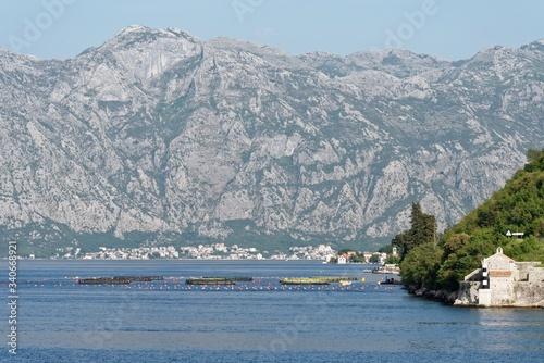 Montenegro - Bucht von Kotor Canvas Print