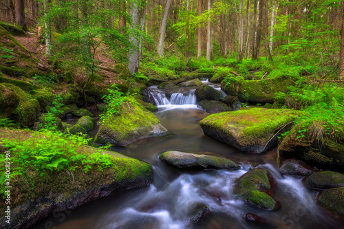 Fototapety, obrazy: waterfall in the forest