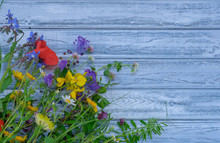 Close Up Of Mixed Colorful Wildflowers On Blue Vintage Wooden Background. Top View On Still Life With Bouquet Of Spring Wild Flowers. Spring Or Summer Cute Floral Background With Copy Space.