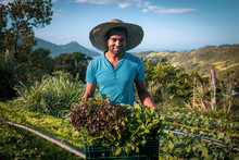 Proud Organic Farmer Man From A Quilombola Community