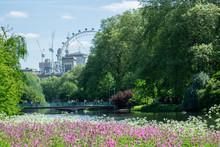 St. James's Park London Near B...