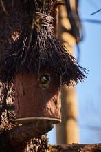 Sikorka Wychylająca Głowę Z Oryginalnej Budki Dla Ptaków