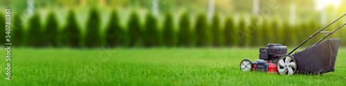 Photo Lawn mower cutting green grass in backyard, mowing lawn, green thuja trees on ba
