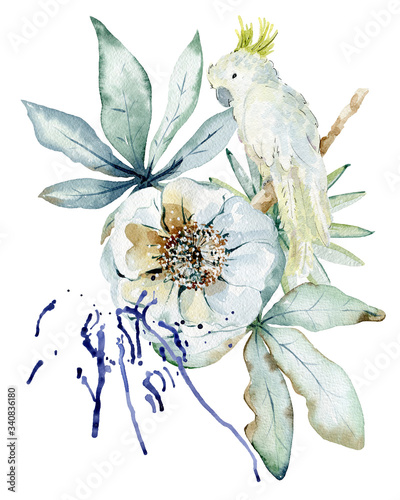 Fotografie, Obraz Tropical watercolor illustration
