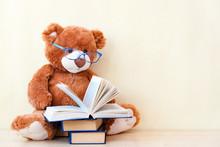 Toy Bear Reading An Interestin...
