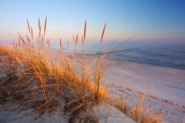 Fototapeta Do Spa Wydmy na wybrzeżu Morza Bałtyckiego,plaża w Dźwirzynie o wschodzie słońca.