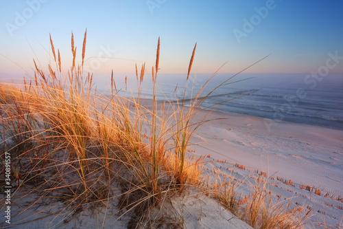 Wydmy na wybrzeżu Morza Bałtyckiego,plaża w Dźwirzynie o wschodzie słońca.