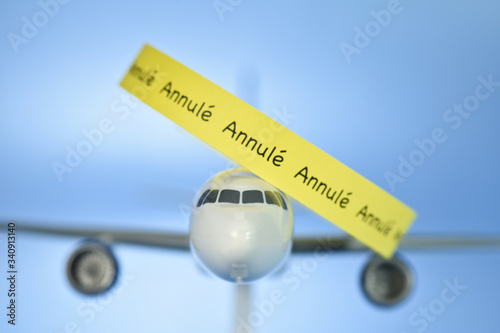 avion aviation vol survol voyage pilote aerien compagnies Canvas Print