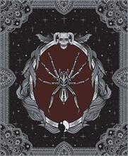 Vector Illustration Spider Ins...