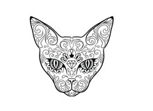 Day Of The Dead Sugar Cat Skull With Floral Ornament Tattoo. Vector Illustration.