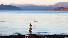 Rear View Of Man Fishing In Water With Pelican Against Sky