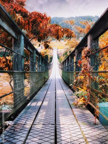 Canvas Print Footbridge Leading Landscape During Autumn