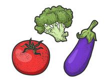 Fresh Vegetables Tomato Eggpla...