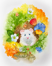 Summer Background Watercolor Illustration. Postcard Cute Painted Hamster In The Summer In A Meadow With Flowers And Strawberries.