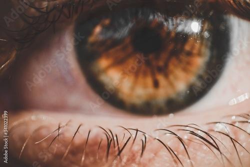 Fototapeta Detail Shot Of Brown Eye With Lashes