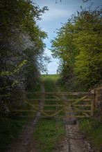 Old Rustic Farm Gate In The Yorkshire Countryside With A Dirt Road