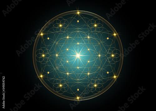 Seed of life symbol Sacred Geometry Wallpaper Mural