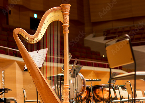 Harp in a large concert hall. Musical instrument.The concert harp Wallpaper Mural