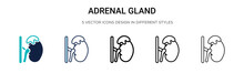 Adrenal Gland Icon In Filled, Thin Line, Outline And Stroke Style. Vector Illustration Of Two Colored And Black Adrenal Gland Vector Icons Designs Can Be Used For Mobile, Ui,
