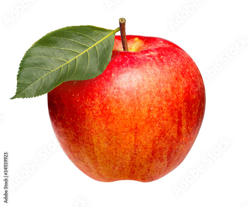 Canvas Print Red Envy Apple isolated on white background, Scilate apple that cross between Ro