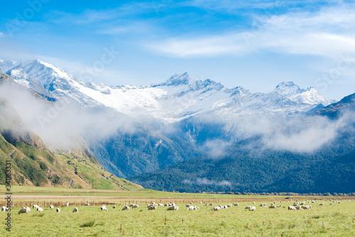 Photo matukituki valley, mt. aspiring national park, otago new zealand
