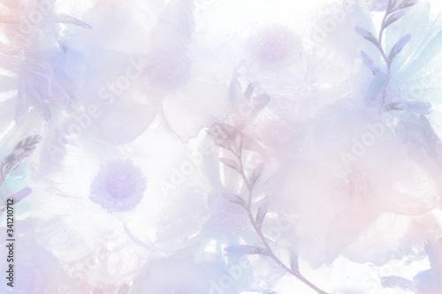 Photo Purple blooming anemone flower background