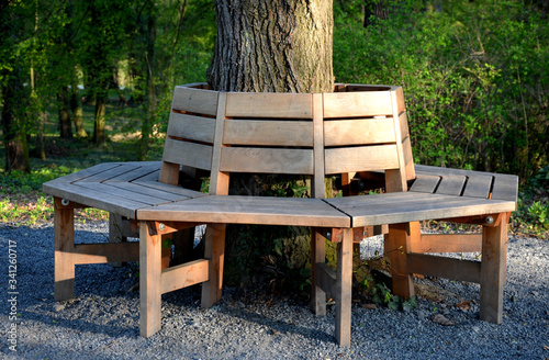 Photo park wooden brown bench encircles a linden trunk circle polygonal shape with bac