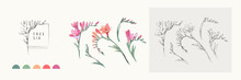 Freesia Flowers Logo And Branc...