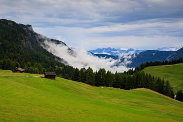 pascoli all'Alpe di Siusi