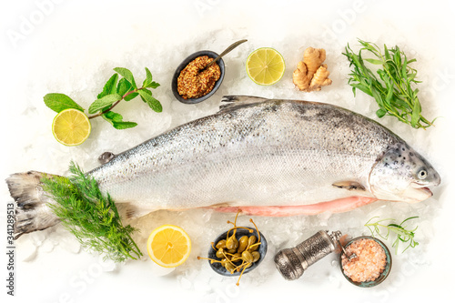 Fresh salmon, shot from the top on a white background with various condiments Tablou Canvas
