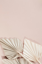Dried Palm Leaves On A Pink Ba...