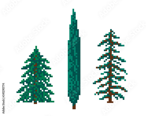 pixel christmas trees, coniferous trees, cypres Canvas
